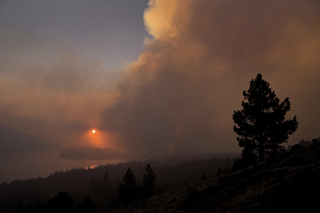 Wildfire Smoke Is Here to Stay. Here's How to Clean the Air Inside Your Home.
